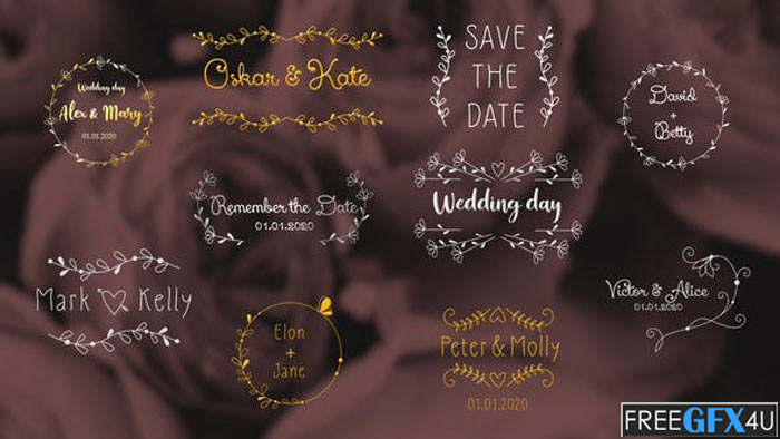 Wedding Day Titles After Effects