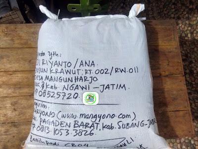 Benih Padi Pesanan  EDI RIYANTO Ngawi, Jatim.   (Setelah di Packing).