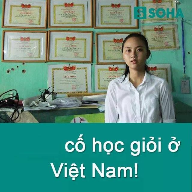 Bạn nghĩ sao về: cố học giỏi ở Việt Nam? - bài viết gây bão CĐM