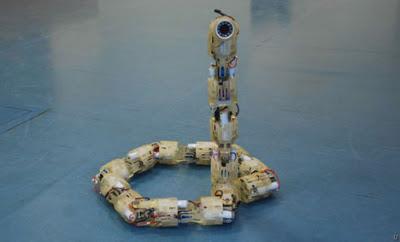 robot+ular.jpg (400×242)