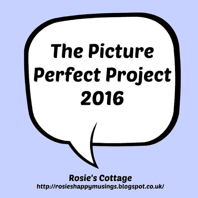 The Picture Perfect Project 2016