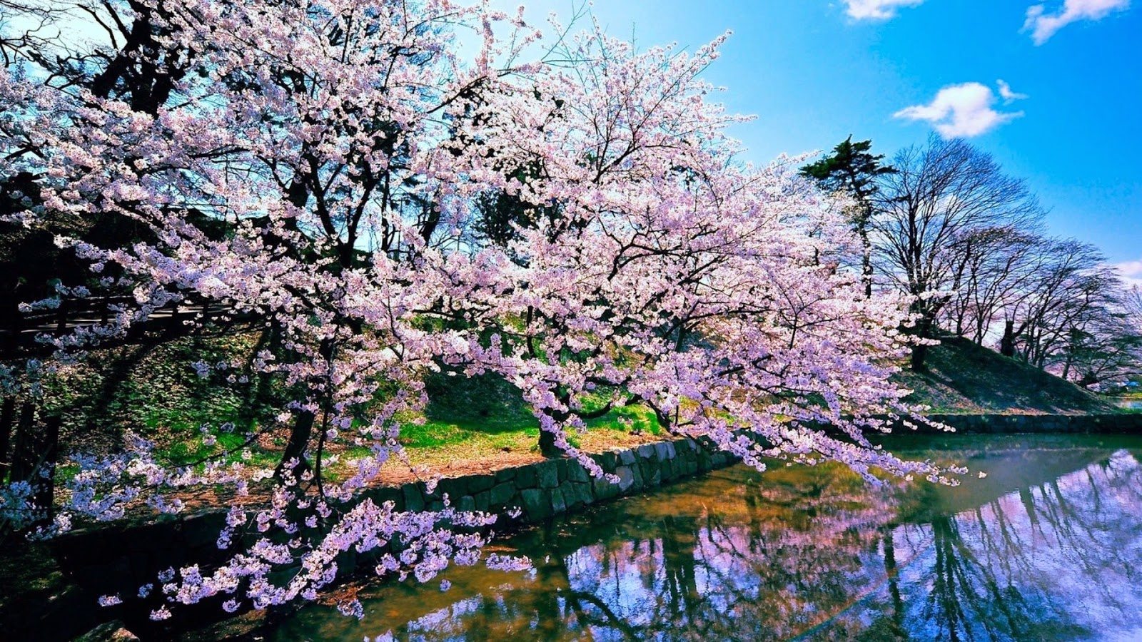 Best Nature Wallpapers: Japan Nature