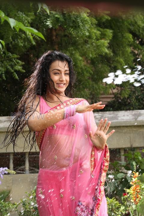 51 Best Trisha Krishnan (Actress) HD Images Pics