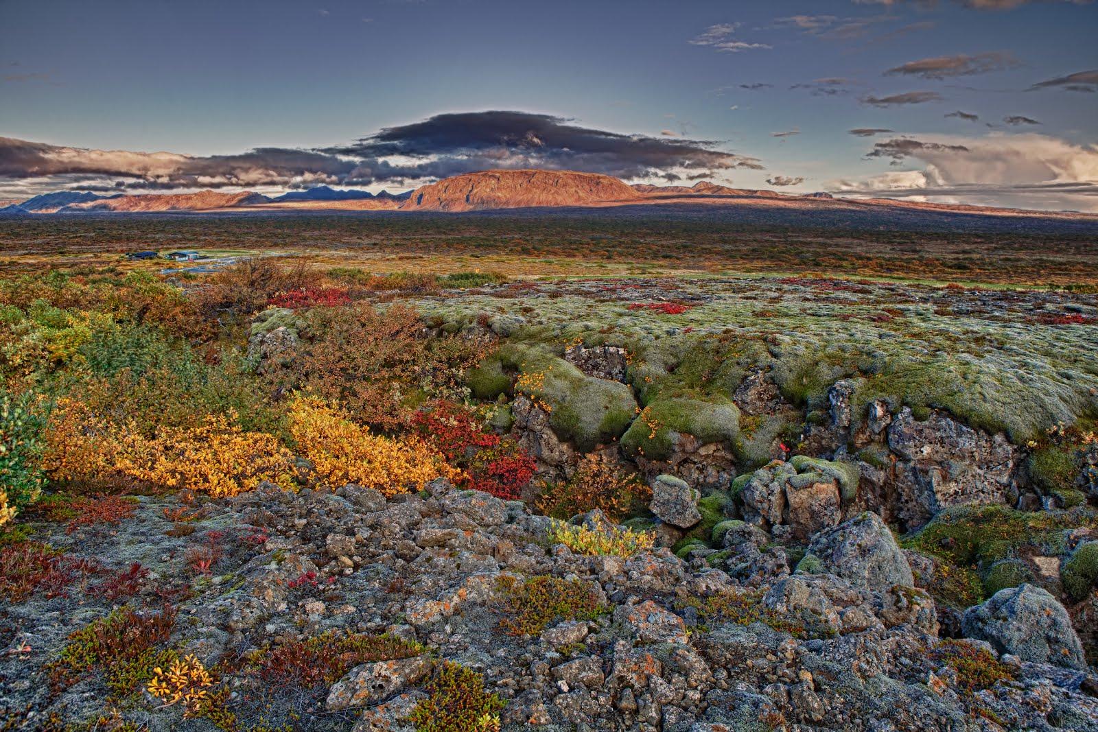 Spectacular Icelandic Nature