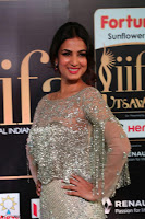 Sonal Chauhan in a stonework Floor Length Silver Designer Gown at IIFA Utsavam Awards March 2017 006.JPG