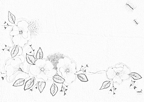 flores pintura em tecido risco