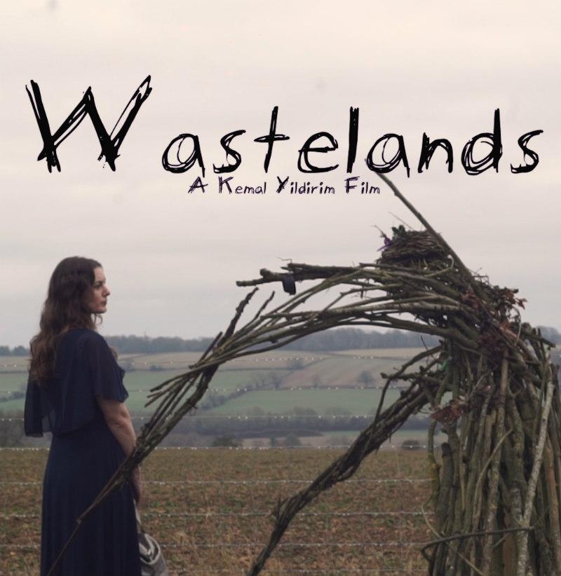 wastelands film poster