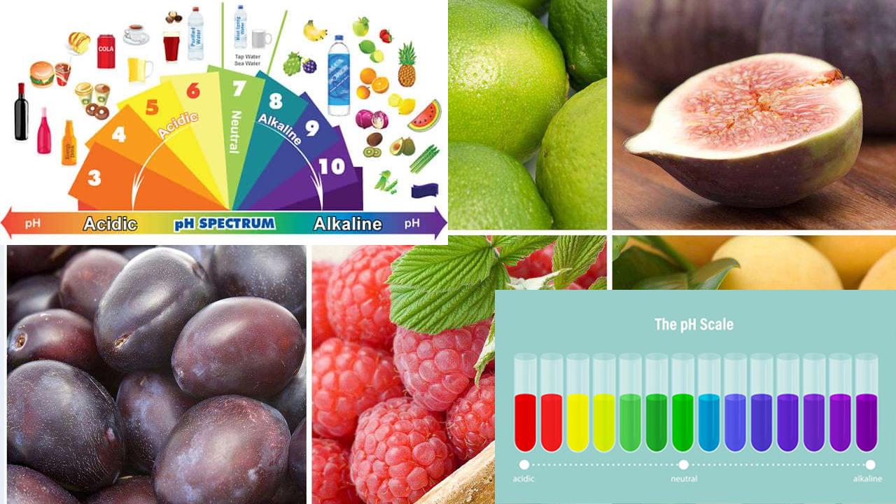 Produkty zakwaszające i odkwaszające organizm