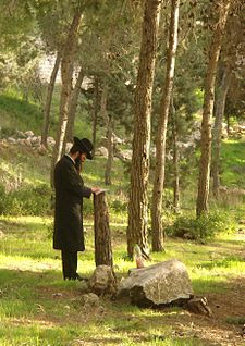 Breslov Hasid praying in the woods