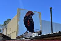 Alice Springs Street Art | Chris Scott