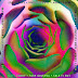 Matt Corby & Tash Sultana - Talk It Out - Single [iTunes Plus AAC M4A]