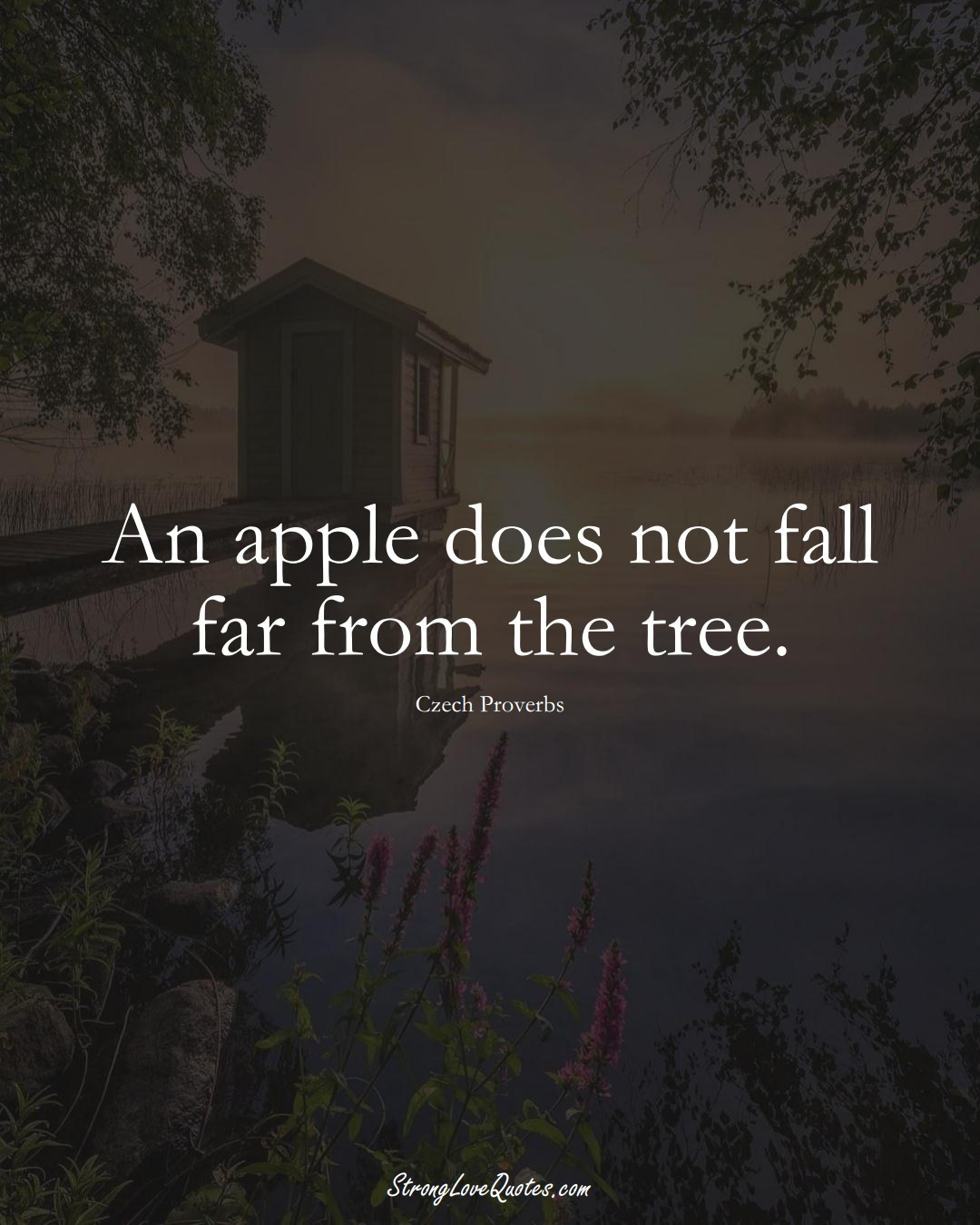 An apple does not fall far from the tree. (Czech Sayings);  #EuropeanSayings