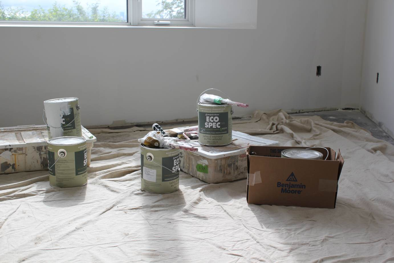 Chasing net zero a world in colour with eco spec paint for Benjamin moore eco spec paint