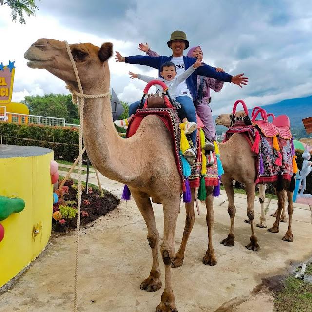 Wisata Edukasi Keluarga di Kota Batu Terbaru