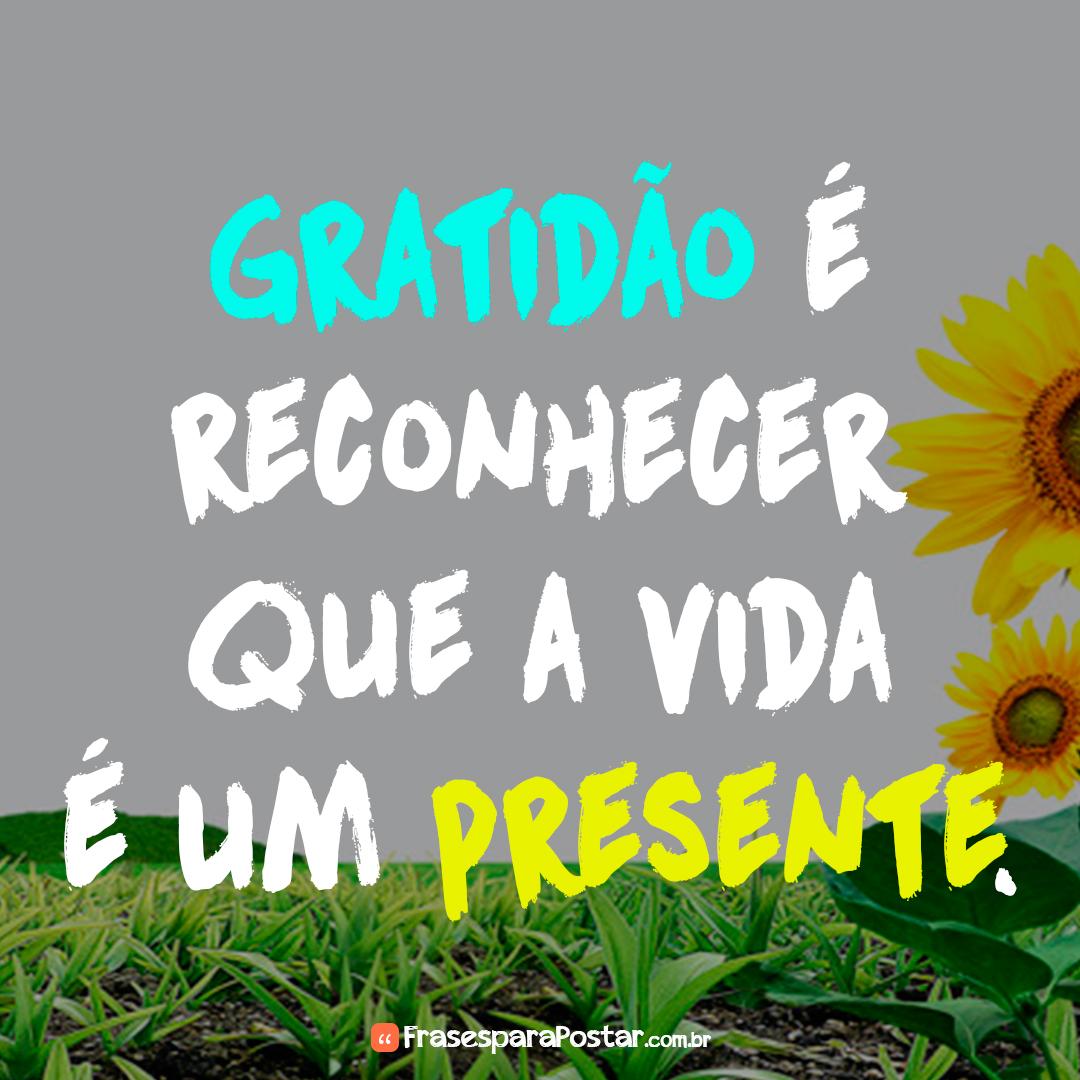 Gratidão é reconhecer que a vida é um presente.