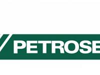 Lowongan Kerja PT Petrosea Tbk Oktober 2020
