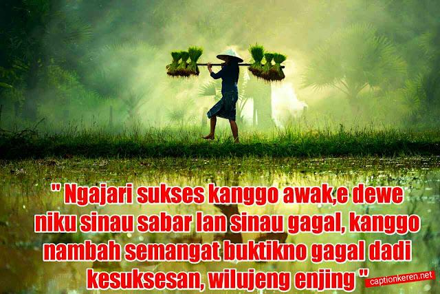 Ucapan Selamat Pagi Bahasa Jawa Lucu Bijak Dan Motivasi