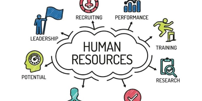 Human Resource Management | What is HRM?