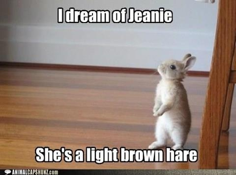 I dream of Jeanie, She's a light brown hare.