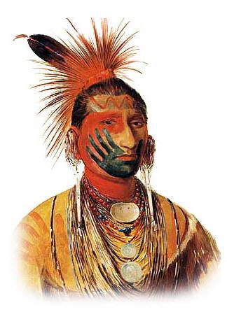 Orange Wolf Drawing Tribal Tribute