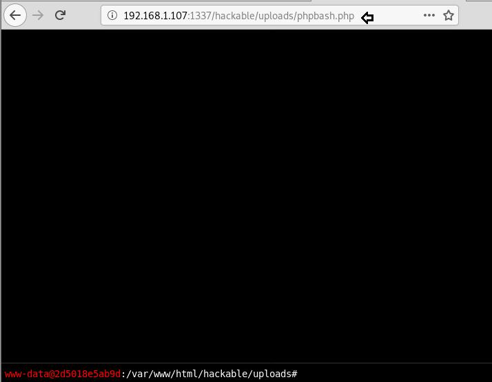 Web Shells Penetration Testing