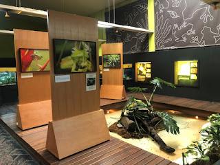 Legado das Águas leva ao Zoológico de São Paulo a  exposição Floresta Viva
