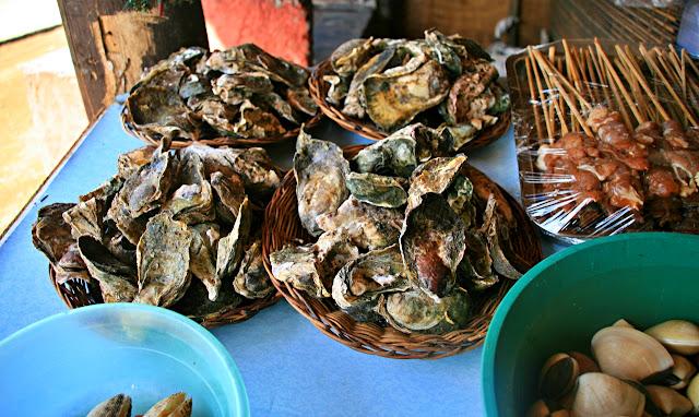 Wasay Wasay Shells