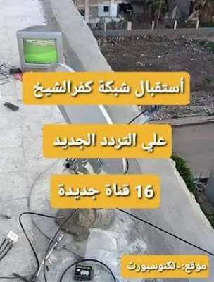 تردد شبكات الدش الهوائي كفر الشيخ