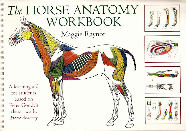 The Horse Anatomy Workbook, A Learning Aid for Students Based on Peter Goody's Classic Work, Horse Anatomy