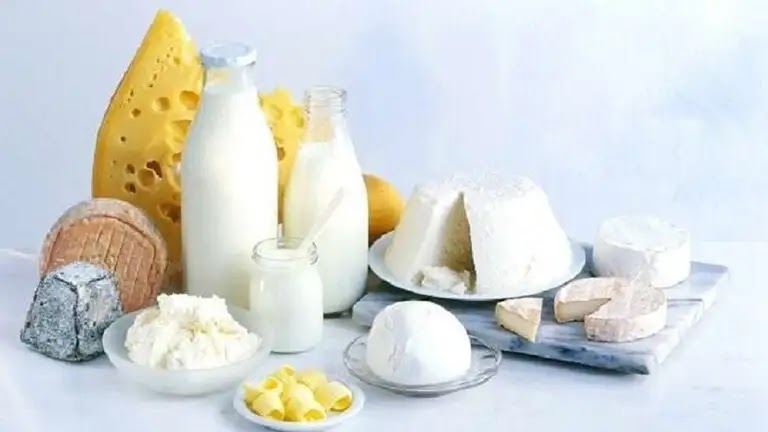 Learn about the benefits and risks of dairy products
