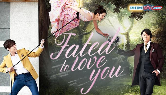 Định Mệnh Anh Yêu Em - Fated to Love You (2014)