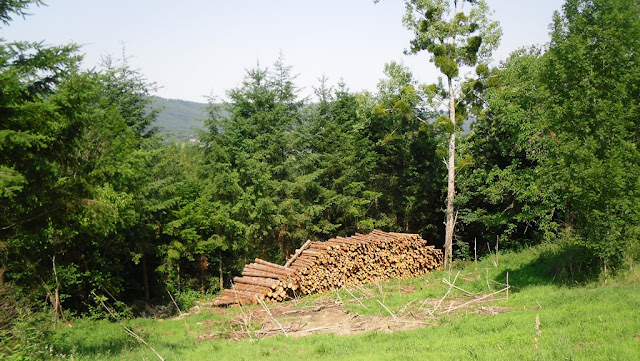 Le col de la Loge