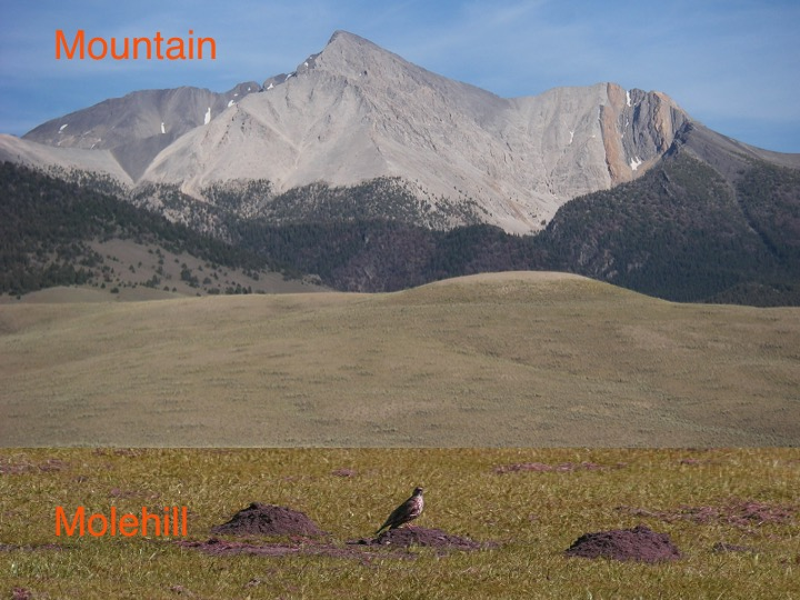Image result for pics of mountains and molehills