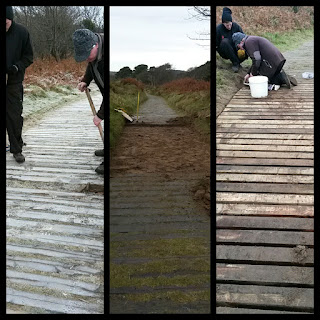 The old boardwalk, while the constructions and the repaired boardwalk.