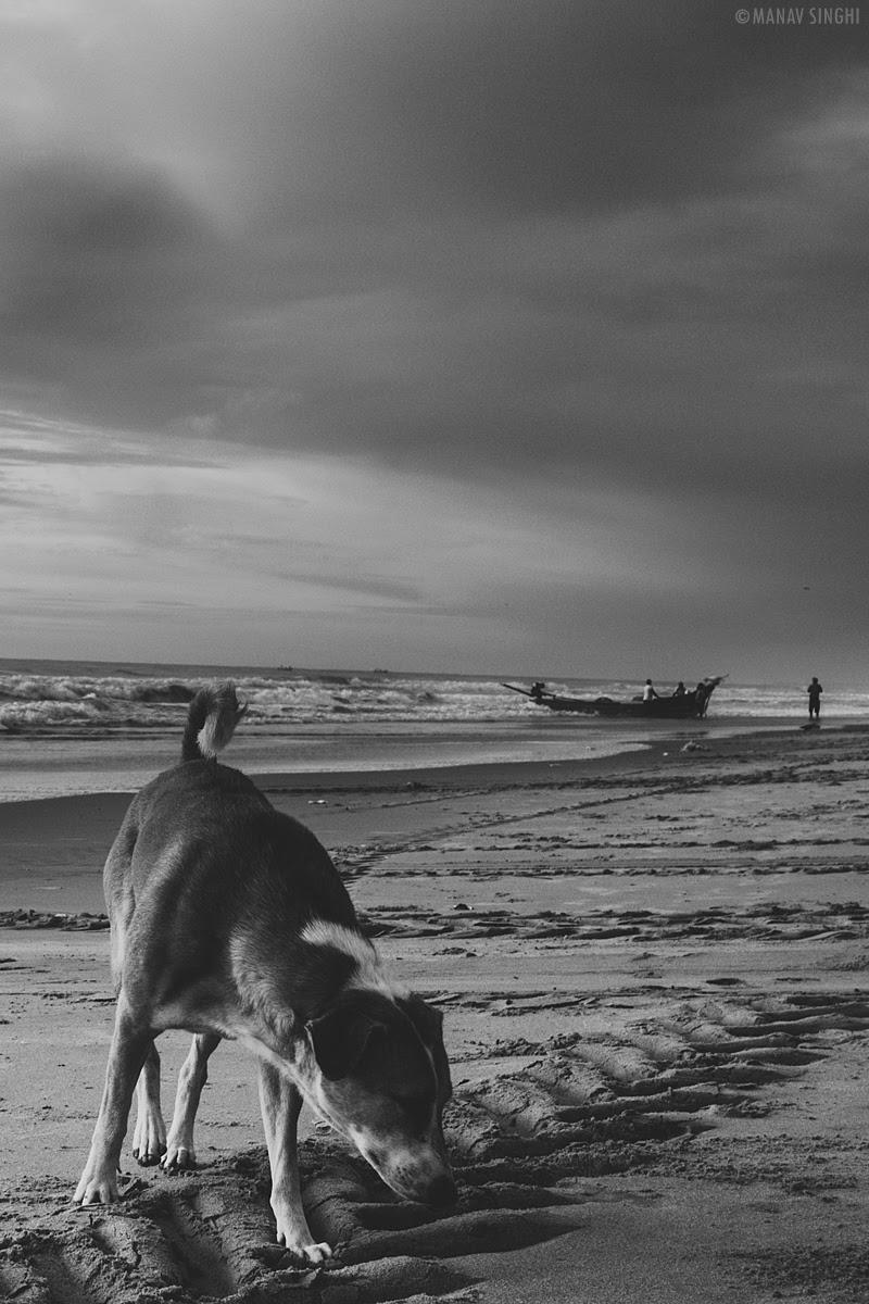 Shot at Fisherman Area near Le Pondy Beach Resort, Pondicherry- 31-Oct-2019