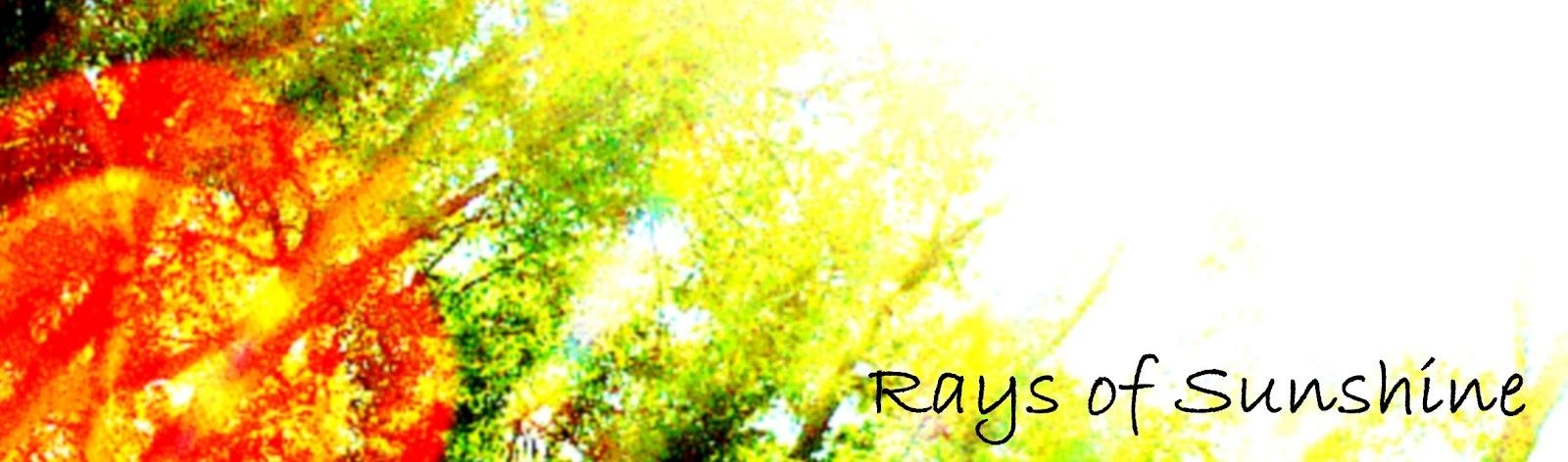 Circles Of Sunshine: Rays of Sunshine-Meet Kim