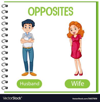 विलोम शब्द या विपरीतार्थक शब्द । hindi grammar opposite word in hindi