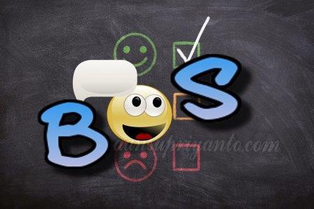 Tips Menjadi Bendahara BOS (Bantuan Operasional Sekolah)