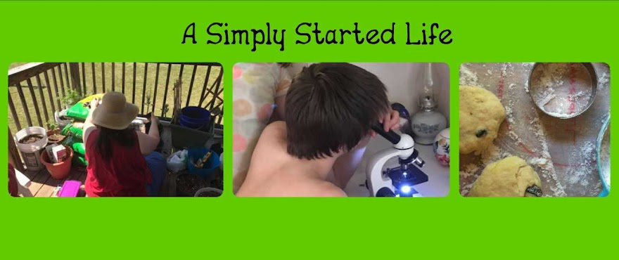 A Simply Started Life