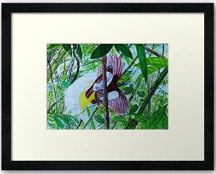 paradise bird art in watercolor painting