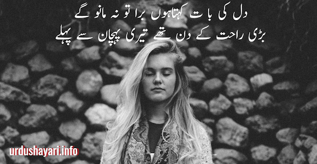 Dil ki baat Dil Shayari in urdu - 2 line poetry image