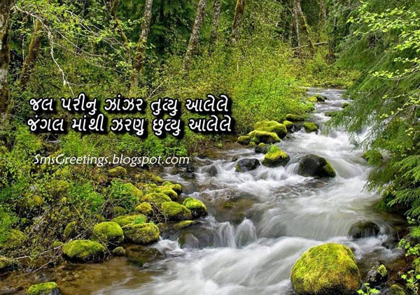 Best Gujarati Shayari With Nature Picture   SMS Greetings