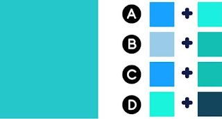 Which two colors make up the color on the left ?