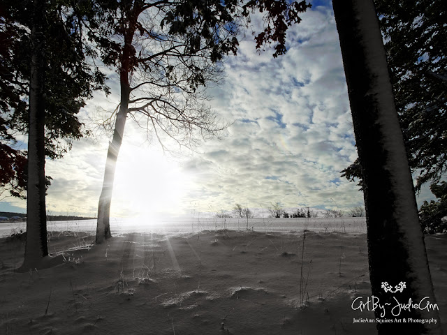Snowdrifts & Sunbeams Photos