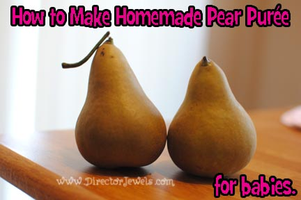 Pear Sauce Baby Food Recipe
