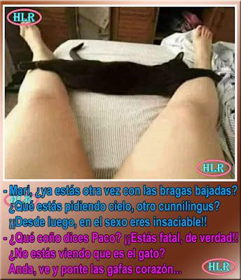 Imagen de un gato negro entre las piernas de una mujer