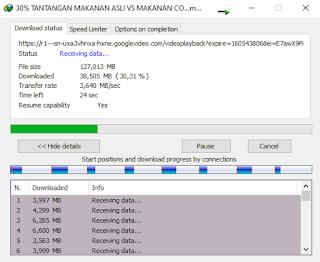 gambar proses download idm berlangsung