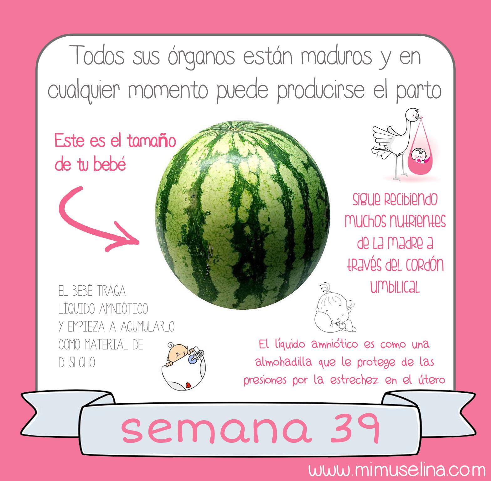 674f24135 BebeBlog by mimuselina  Semana 39 embarazo. Tamaño y evolución del ...