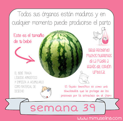 bb3bd7146 BebeBlog by mimuselina