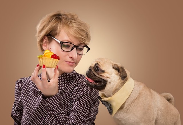 Beware! These Human Foods Can Kill Your Dog: You Will Be Held responsible For it.